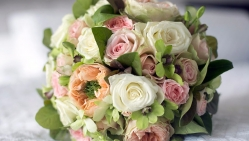 Pink white and peach roses Grandiflora